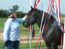 horse-ability2